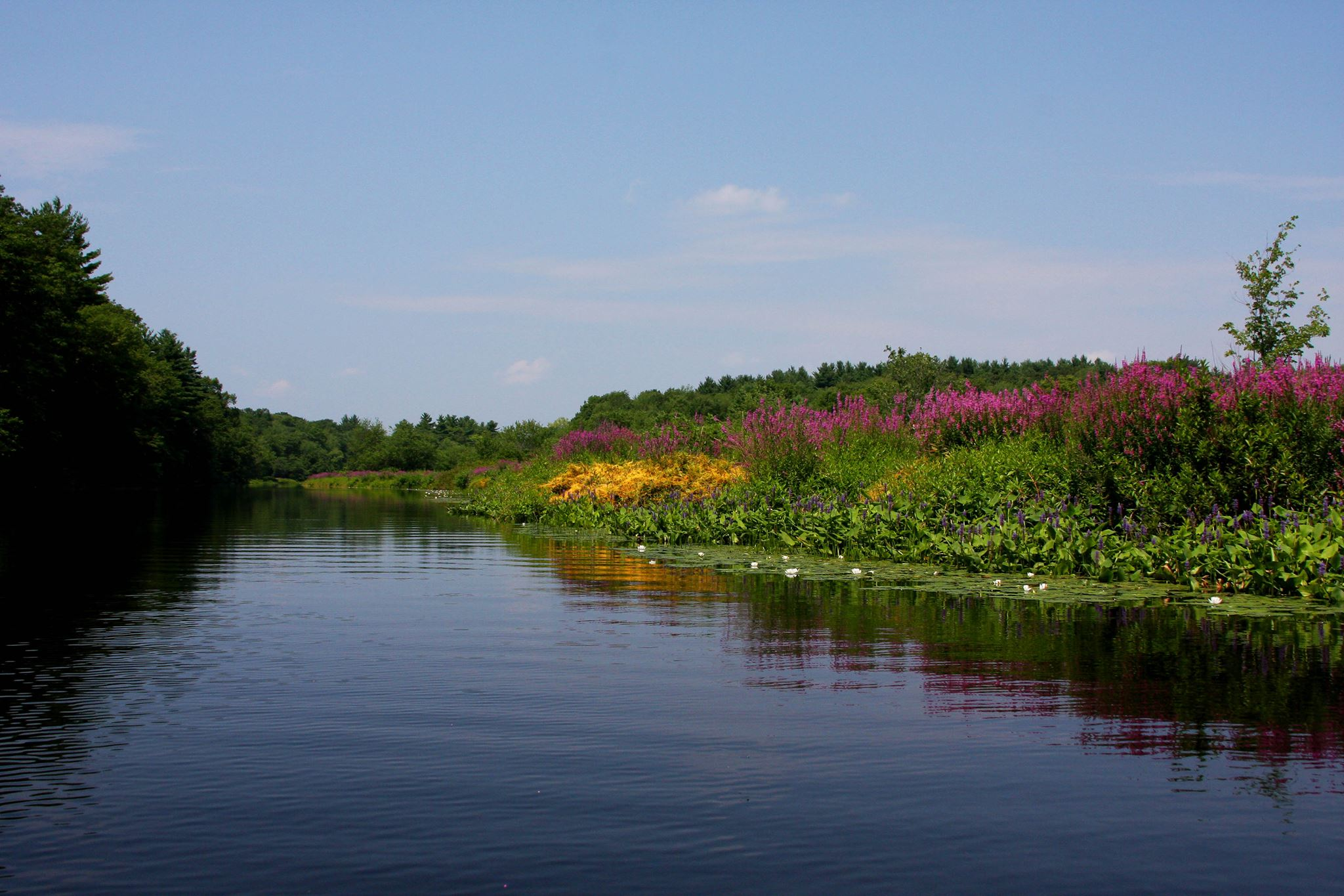 Charles River Watershed Association