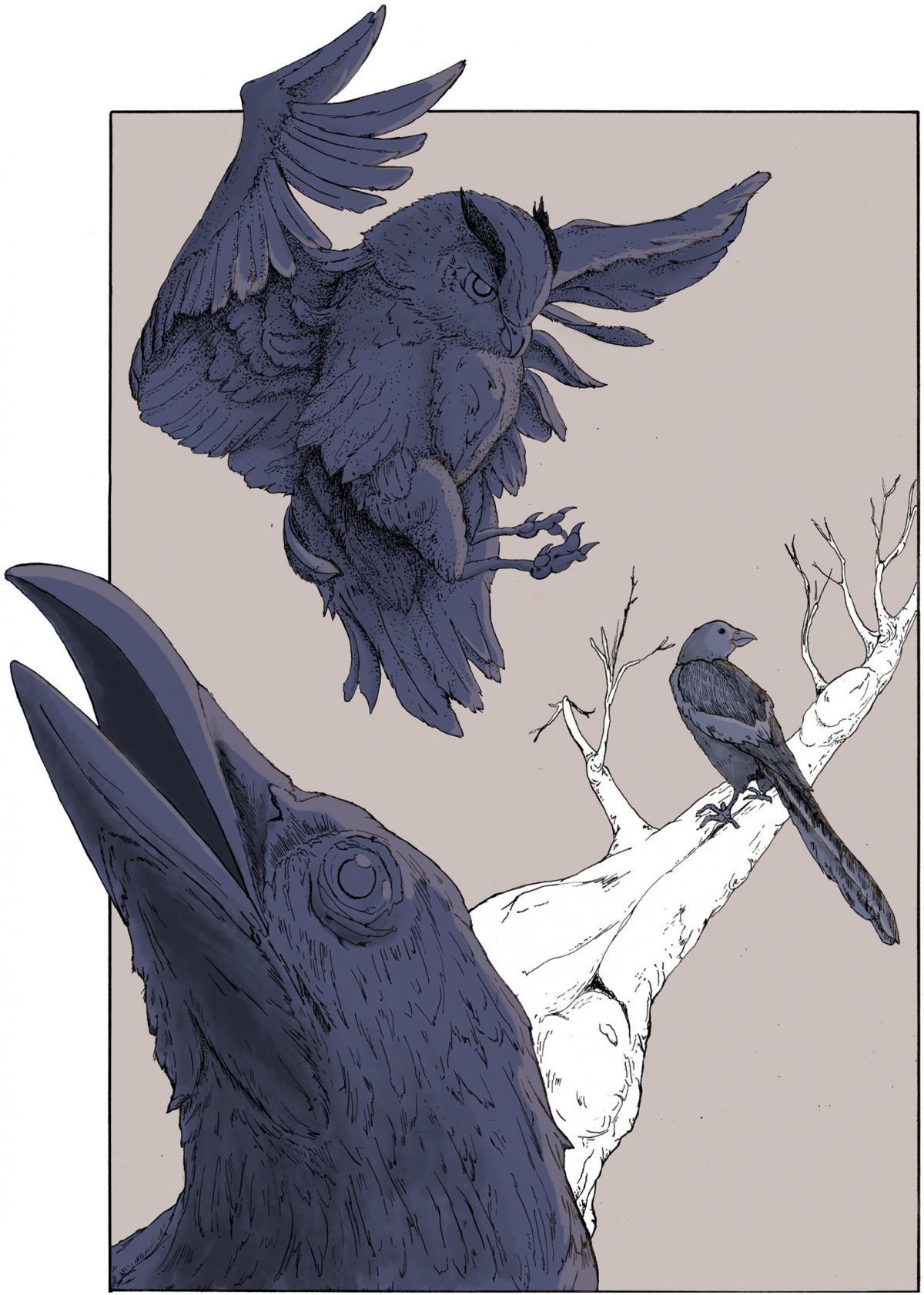 Illustration by Camden O'neill