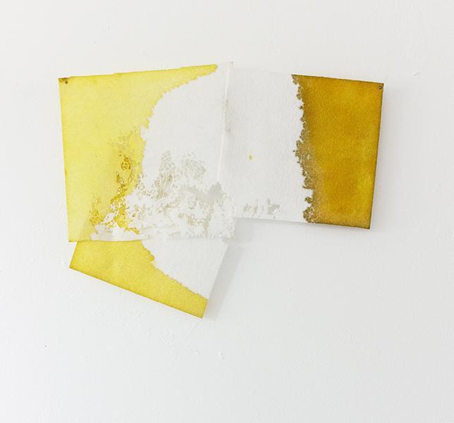 Moth-eaten by Diana Jean Puglisi
