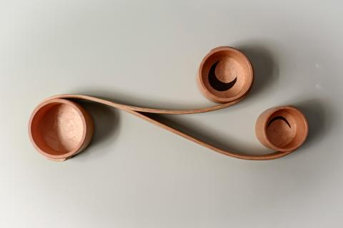 Fiddlehead Shelf by Heather Tauck